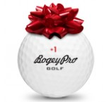 Bad Golfer Gift Package